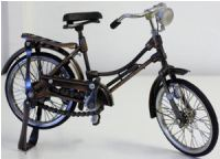 Bicycle Coll - Cruiser Female 32x15.5cm