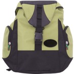 Icool Backpack - Lime