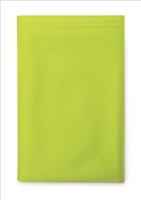 10Inch Ipad/Tablet Carry Case-Lime Green