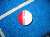 Cw Polysoft Dual Cricket Ball 1/2 Red , 1/2 White - Snr