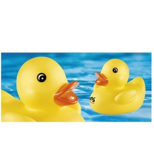 Ducky Duck Bath Toy