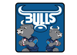 Blue Bulls Coasters - 4 in a Pack  Rugby Coasters - Min order 50