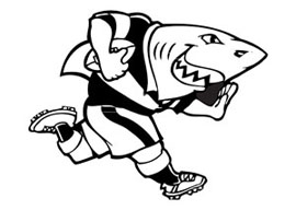 Sharks Magnet Small Rugby Keyrings - Min order 50 units.