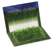 Greeting card containing grass seeds. Delivered in polybag with