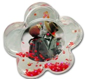 Star Shaped Photoglobe / Snowglobe  With Centre Picture Insert -