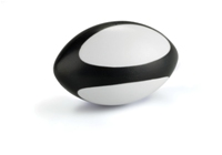 Fan Bottle Rugby Stress Ball-Black/White