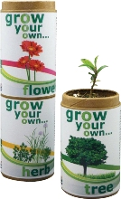 Grow your own herb - organic herb seeds in recycled container.