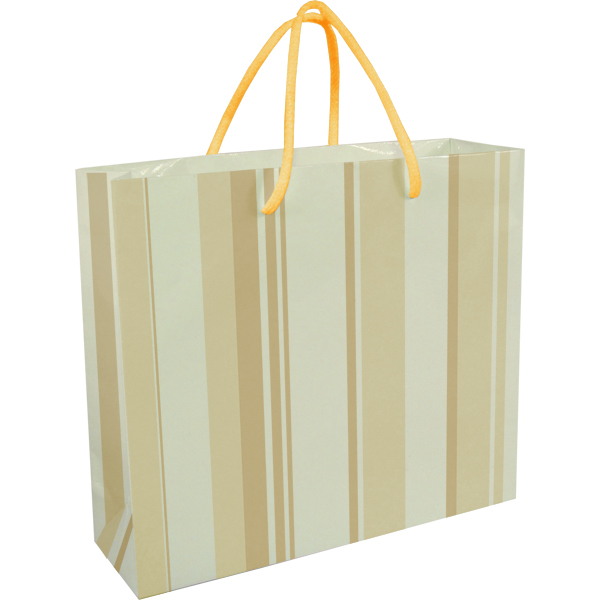 Darby Paper Gift Bag. EACH (H)230 (W)260 mm