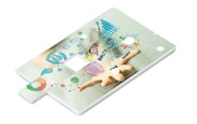 Picasso Puzzle Memory Card - 8GB