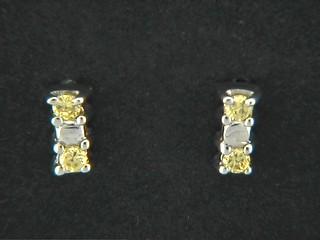 Cubic And Shinny Claw Set Bar Earrings