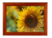 Burgandy Wooden Photo Frame with Perspex - 4 Windows (12 * 16 in