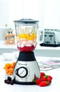 Russel Hobbs S/Steel Blender With Ice Crusher (1000Watt!!!)